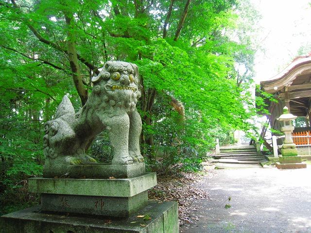 こも神社狛犬2